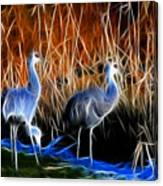 Sandhill Cranes Pair Fractal Canvas Print