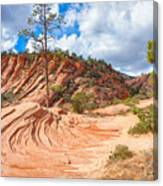 Sandstone Carvings Canvas Print