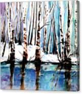 Sandy River  Canvas Print