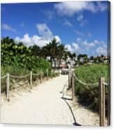 Sandy Trail Miami Florida Canvas Print