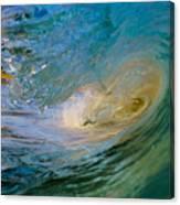 Sandy's Beauty 4 Canvas Print