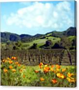 Sanford Ranch Vineyards Canvas Print