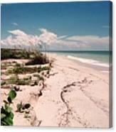Sanibel Beach I Canvas Print
