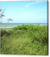 Sanibel Island Canvas Print