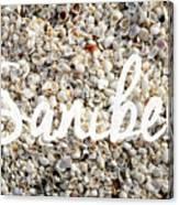 Sanibel Island Seashells Canvas Print