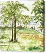 Sanibel Shores Sketch Canvas Print