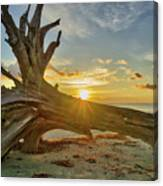 Sanibel Sunrise Canvas Print