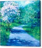 Sanita Hill Canvas Print