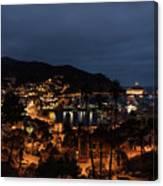 Santa Catalina Island Nightscape Canvas Print