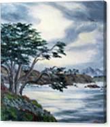 Santa Cruz Cypress Tree Canvas Print
