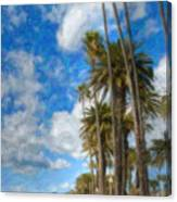 Santa Monica Ca Palisades Park Bluffs Palm Trees Canvas Print