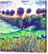 Santa Rosa Plateau Canvas Print