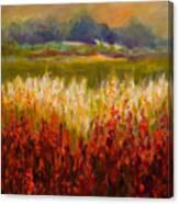 Santa Rosa Valley Canvas Print