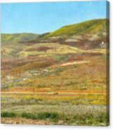 Santa Ynez Mountains Wildflowers Canvas Print