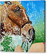 Sara Washes Her Horse Canvas Print