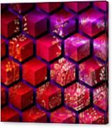 Sari Cubed Canvas Print