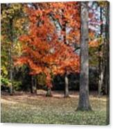 Saturday Here In The Park Canvas Print
