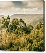 Savage River Lookout, Tarkine, Tasmania Canvas Print