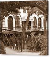 Savannah Arches In Sepia Canvas Print