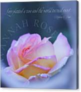 Savannah Rose 3 Canvas Print