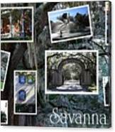 Savannah Scenes Collage Canvas Print