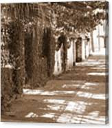 Savannah Sepia - Sunny Sidewalk Canvas Print