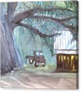 Savannas Backwoods Canvas Print