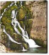 Savica Waterfall Canvas Print