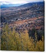 Sawtooth National Forest 1 Canvas Print