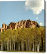 Sawtooths And Aspens Canvas Print