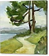 Saxe Point Tree Canvas Print