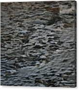 Scaley Log Canvas Print