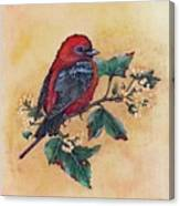 Scarlet Tanager - Acrylic Painting Canvas Print