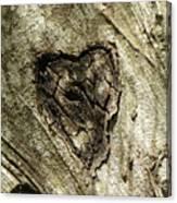 Love Endures Canvas Print