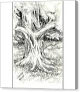 Scary Tree Canvas Print