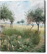 Scene From Rhine Canvas Print