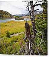 Scenic Alpine Lake And Meadow Canvas Print