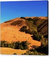 Scenic California Canvas Print