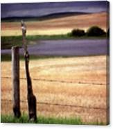 Scenic Saskatchewan Landscape Canvas Print