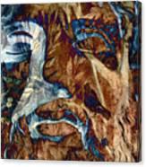 Schizophrenia Canvas Print