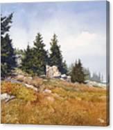 Schoodic Coast Canvas Print