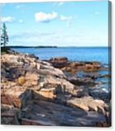 Schoodic Shoreline  Canvas Print