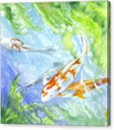 School Of Koi Canvas Print