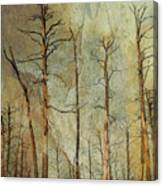 Scorched Forest Canvas Print