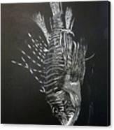 Scorpion Fish Canvas Print