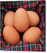 Scotch Eggs Canvas Print