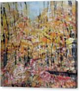 Scotts Run Nature Preserve 201803 Canvas Print