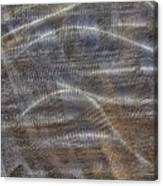 Scratched Metal Canvas Print