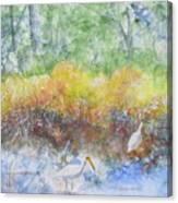 Scrounging Around Canvas Print