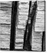 Sculpted Log Canvas Print